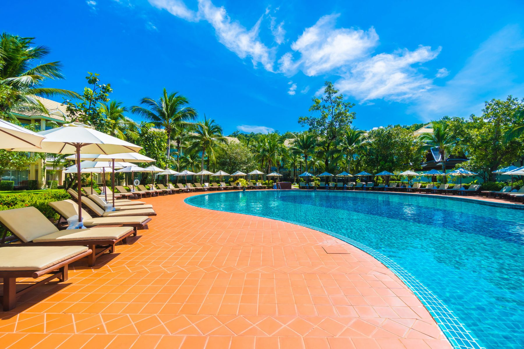 Beautiful luxury umbrella and chair around outdoor swimming pool in hotel and resort with coconut palm tree on blue sky - Boost up color Processing